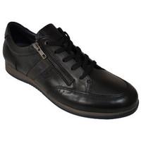 Chaussures Homme Derbies Fluchos DANIEL NEGRO