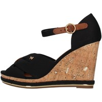 Chaussures Femme Sandales et Nu-pieds Wrangler WL11652A Noir