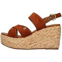 Chaussures Femme Sandales et Nu-pieds Wrangler WL11640A Marron