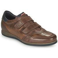 Chaussures Homme Baskets basses Fluchos DANIEL Marron