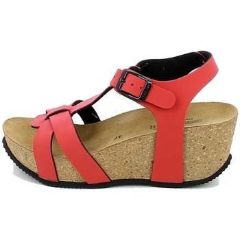 Chaussures Femme Nouveautés de ce mois Gold Star 1420TX.11_36 Rouge