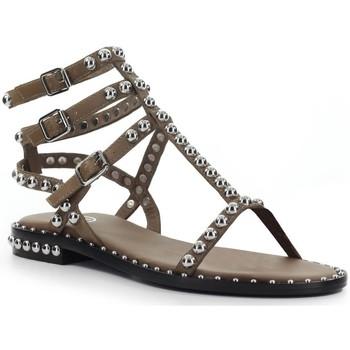 Chaussures Femme Sandales et Nu-pieds Ash Play Brown