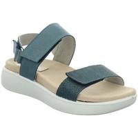 Chaussures Femme Sandales et Nu-pieds Westland By Josef Seibel BORNEO 10 AZUL Sandalias