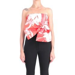 Vêtements Femme Débardeurs / T-shirts sans manche Hanita H.M2253.3077 Epaules découvertes Femme Groseille Groseille