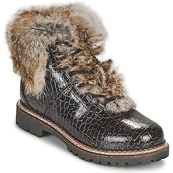 Chaussures Femme Boots Kimberfeel ASTANA Marron