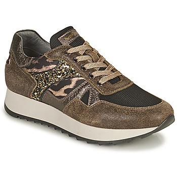 Chaussures Femme Baskets basses NeroGiardini  Kaki / Leopard