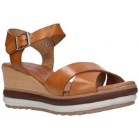 Chaussures Femme Sandales et Nu-pieds Valeria's 7230 Mujer Cuero marron