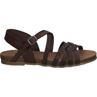 Chaussures Femme Sandales et Nu-pieds Cosmos Comfort Sandales Braun