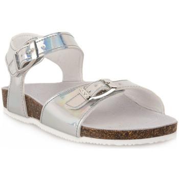 Chaussures Garçon Nouveautés de ce mois Gold Star GHIACCIO Grigio