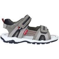 Chaussures Enfant Sandales et Nu-pieds Levi's VMIA0030S Gris
