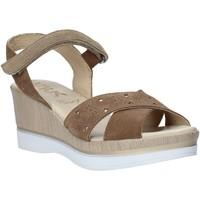 Chaussures Femme Sandales et Nu-pieds Melluso .037064F Marron