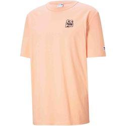 Vêtements Homme T-shirts manches courtes Puma 530899 Orange
