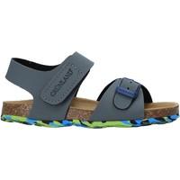 Chaussures Enfant Sandales et Nu-pieds Grunland SB1640 Gris