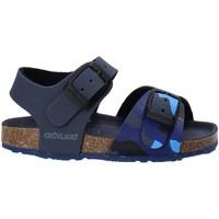 Chaussures Enfant Sandales et Nu-pieds Grunland SB1646 Bleu