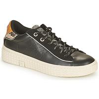 Chaussures Femme Baskets basses Palladium Manufacture TEMPO 04 SYN Noir
