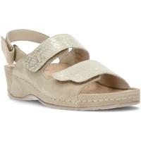 Chaussures Femme Sandales et Nu-pieds Dtorres ELENA BEIG