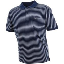Vêtements Homme Polos manches courtes Culture Sud Daffiny polo h imp3 nav Bleu marine / bleu nuit