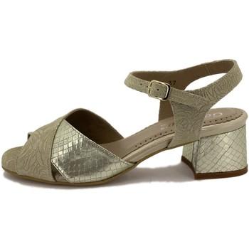 Chaussures Femme Sandales et Nu-pieds Gasymar 190287 Otros
