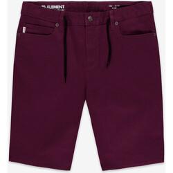 Vêtements Garçon Jeans slim Element Jean slim - bordeaux Noir