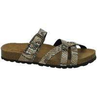 Chaussures Femme Sandales et Nu-pieds Biobio  Beige