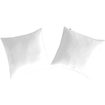 Maison & Déco Taies d'oreillers, traversins Naf Naf Taie d'oreiller CASUAL (2) blanc