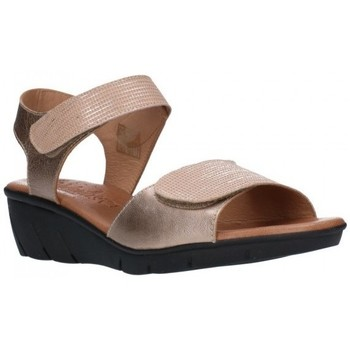 Chaussures Femme Sandales et Nu-pieds Valeria's 7000 Mujer Taupe marron