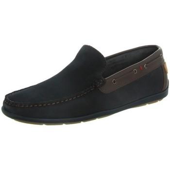 Chaussures Homme Mocassins Tucs Mocassins  ref_tom46259 Marine Marron