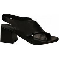 Chaussures Femme Sandales et Nu-pieds Mat:20 WEST nero