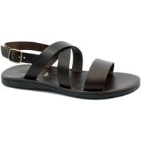 Chaussures Homme Sandales et Nu-pieds Zeus ZEU-CCC-21214-TM Marrone