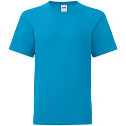 Vêtements Enfant T-shirts manches courtes Fruit Of The Loom 61023 Azur