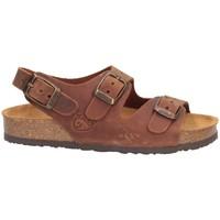 Chaussures Garçon Sandales et Nu-pieds Plakton 120046 Sandales Enfant CUIR CUIR