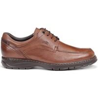 Chaussures Homme Derbies Fluchos 9142 SALVATE CRONO MARRON