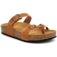 Chaussures Femme Sandales et Nu-pieds Emma 9156 Cork Marron
