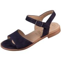 Chaussures Femme Sandales et Nu-pieds Sioux Cosinda Noir