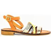 Chaussures Femme Sacs de voyage Donna Lucca CORALIE PLATINE OR CAMEL