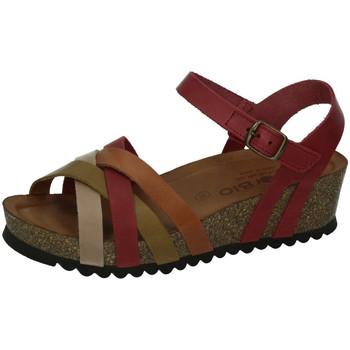 Chaussures Femme Sandales et Nu-pieds Biobio  Rouge