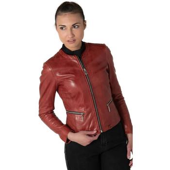 Vêtements Femme Vestes en cuir / synthétiques Rose Garden ETHEL LAMB RUBY ROSE WOOD Rouge