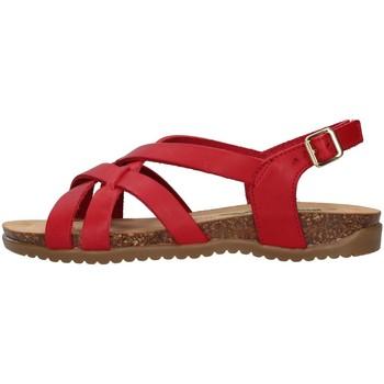 Chaussures Femme Sandales et Nu-pieds Bionatura 34A2168 ROUGE