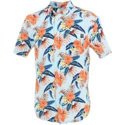 Vêtements Homme Chemises manches courtes Treeker9 Borneo hawai chemisemc h Bleu ciel