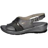 Chaussures Femme Sandales et Nu-pieds Florance 22635 CONDUIRE