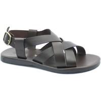 Chaussures Homme Sandales et Nu-pieds Zeus ZEU-CCC-1265-TM Marrone