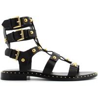 Chaussures Femme Sandales et Nu-pieds Ash PETRUS Nero