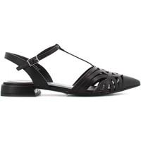 Chaussures Femme Sandales et Nu-pieds Elvio Zanon EN1802X Nero