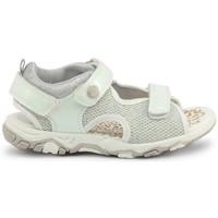 Chaussures Enfant Sandales et Nu-pieds Shone - 1638-035 Blanc