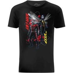 Vêtements Homme T-shirts manches courtes Ant-Man  Noir