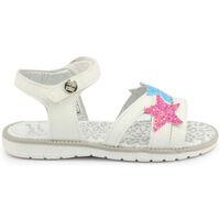 Chaussures Fille Sandales et Nu-pieds Shone - 8233-015 Blanc