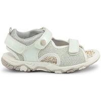 Chaussures Garçon Sandales et Nu-pieds Shone - 1638-035 Blanc