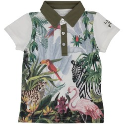 Vêtements Enfant Polos manches courtes Interdit De Me Gronder ROBINSON Multicolore