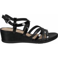 Chaussures Femme Sandales et Nu-pieds Geox Sandales Schwarz