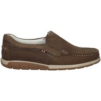 Chaussures Homme Mocassins Wild Land FOSTER TAUPE